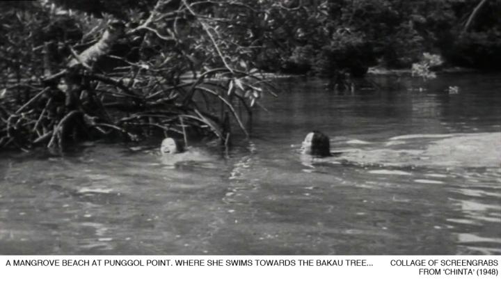 _08-Chinta-PunggolBeach-Mangrove