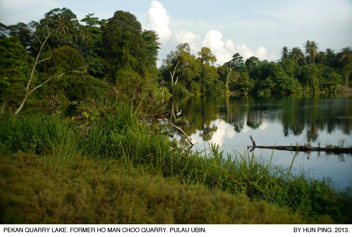 _15A-Pulau Ubin-Pekan-Quarry-Lake-Ho-Man-Choo-2013