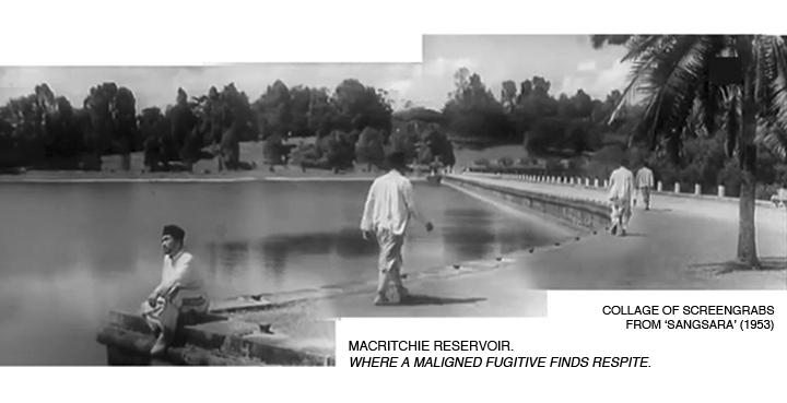 _01-Sangsara-MacRitchie-Reservoir