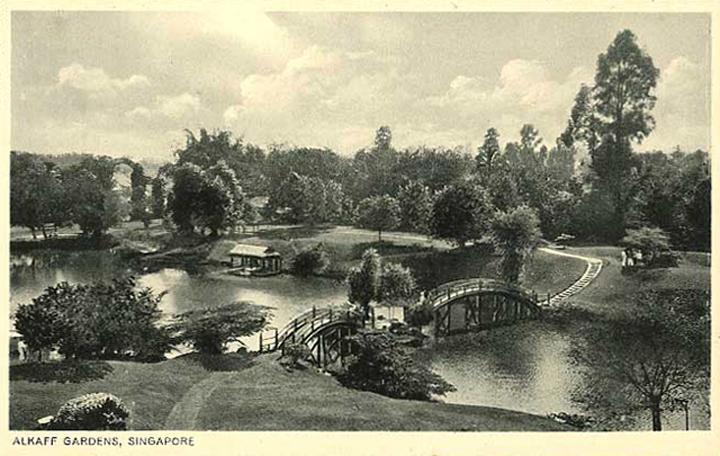 _07A-Alkaff-Gardens-postcard