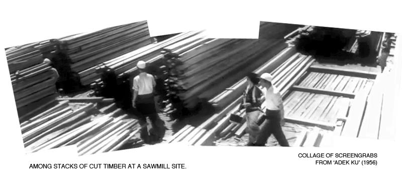 _06-Adekku-Sawmill