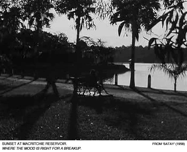 _02-Satay-MacRitchie-Reservoir-breakup