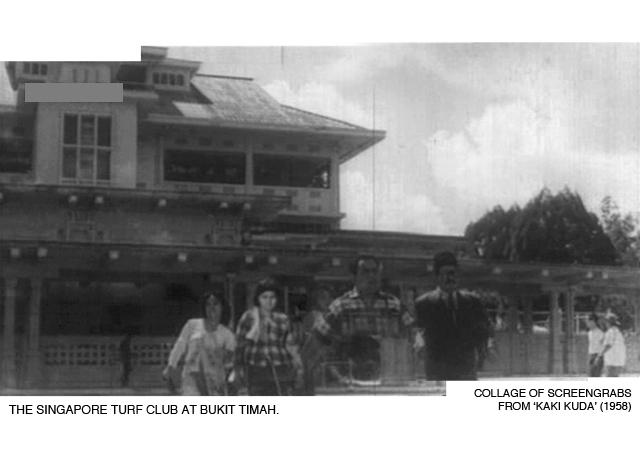 _05-Kaki-Kuda-Bukit-Timah-Turf-Club