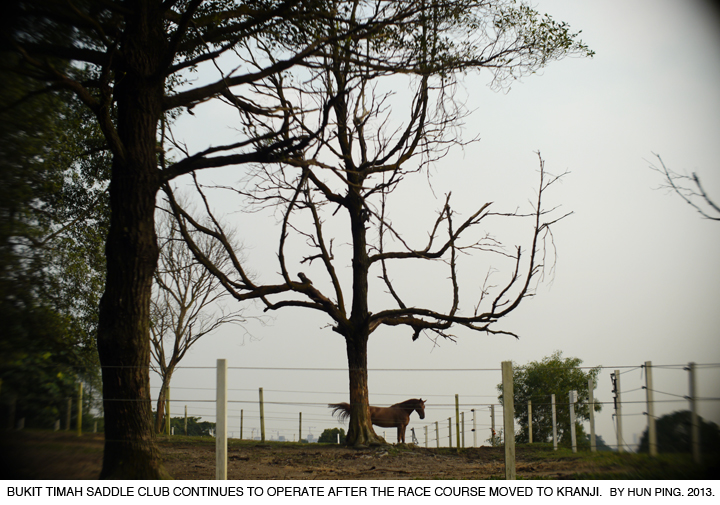 _08B-Bukit-Timah-Saddle-Club-2013