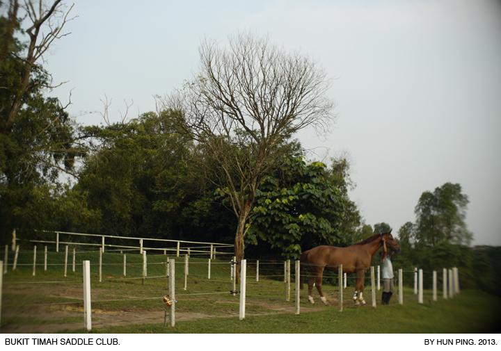 _08C-Bukit-Timah-Saddle-Club-2013