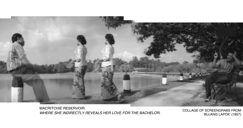 _13-Bujang-Lapok-MacRitchie-Reservoir-1