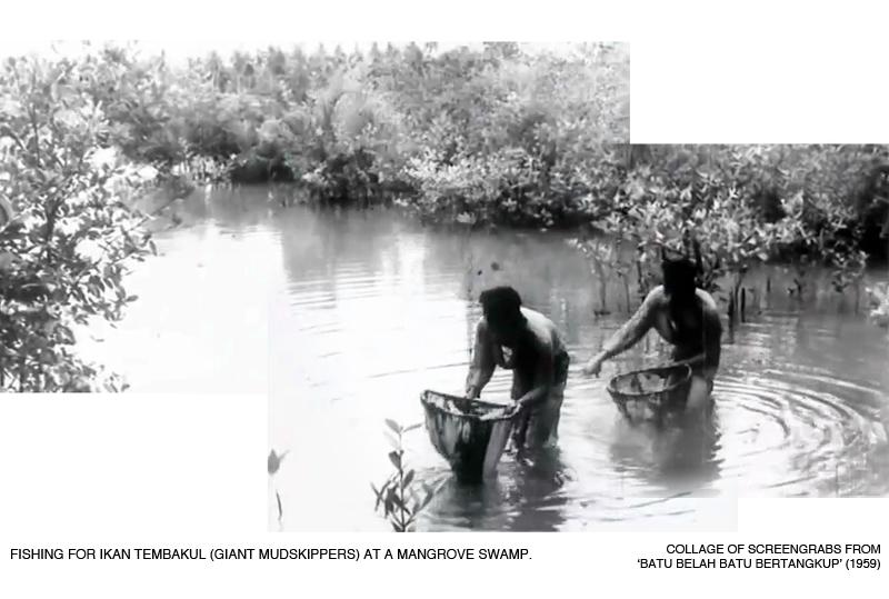 _01-Batu-Bertangkup-Mangrove