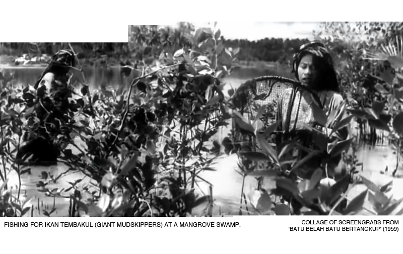 _03-Batu-Bertangkup-Mangrove
