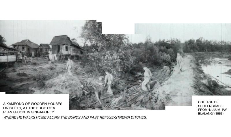 _05-Pak-Belalang-Plantation-Kampong