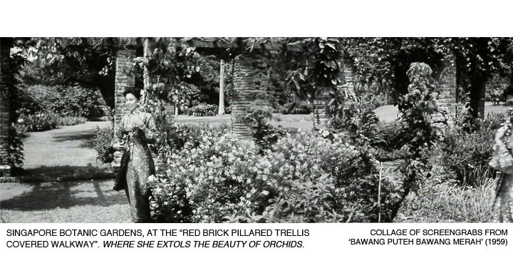 _06-Bawang-Merah-Botanic-Gardens