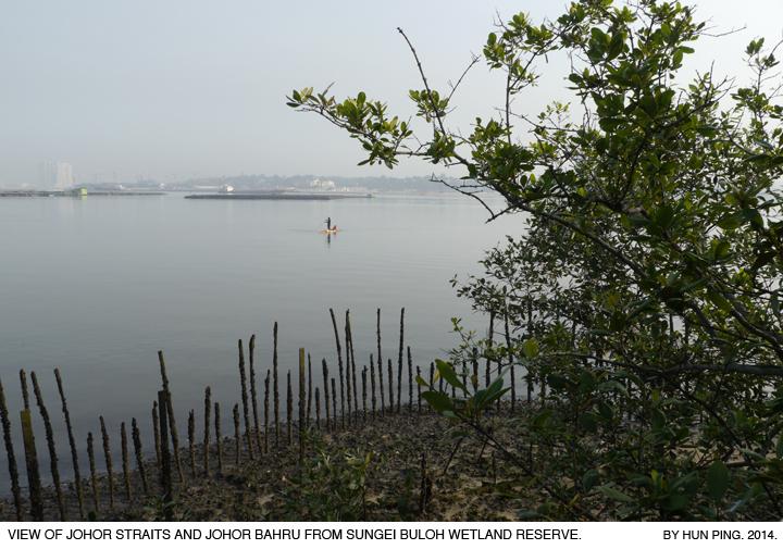 _06C-Sungei-Buloh-Johor-Straits-2014